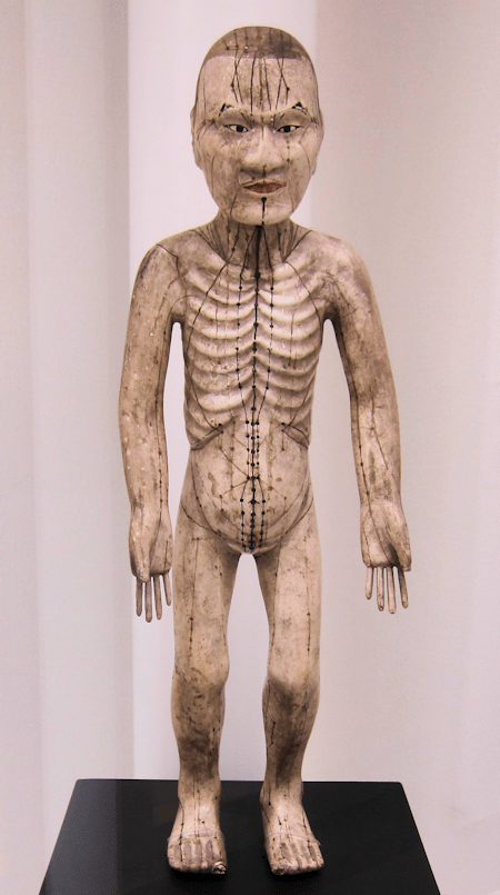 Japanese Acupuncture Model